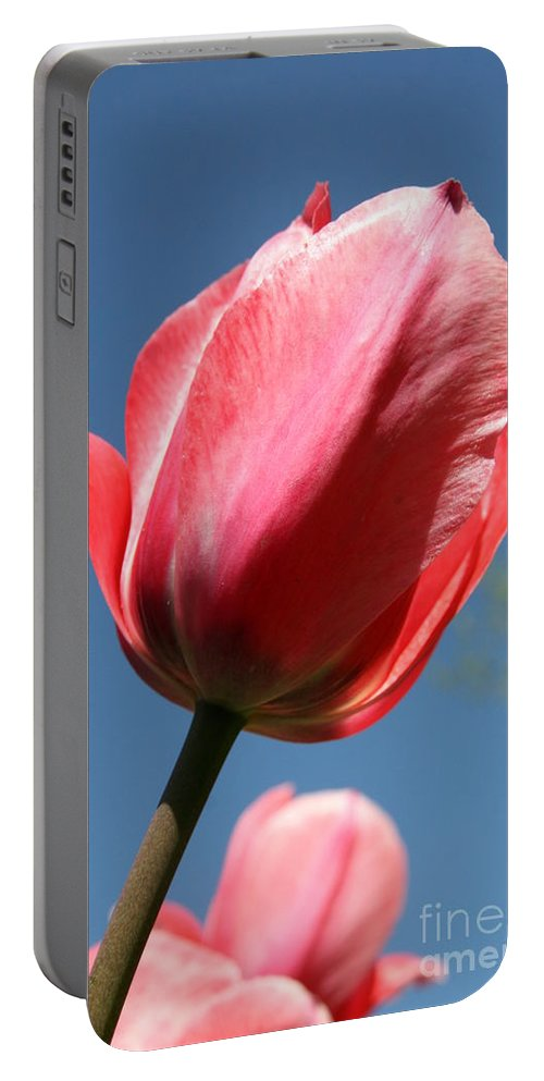 Tulip Portable Battery Charger featuring the photograph Spring Tulip Blues by Neal Eslinger