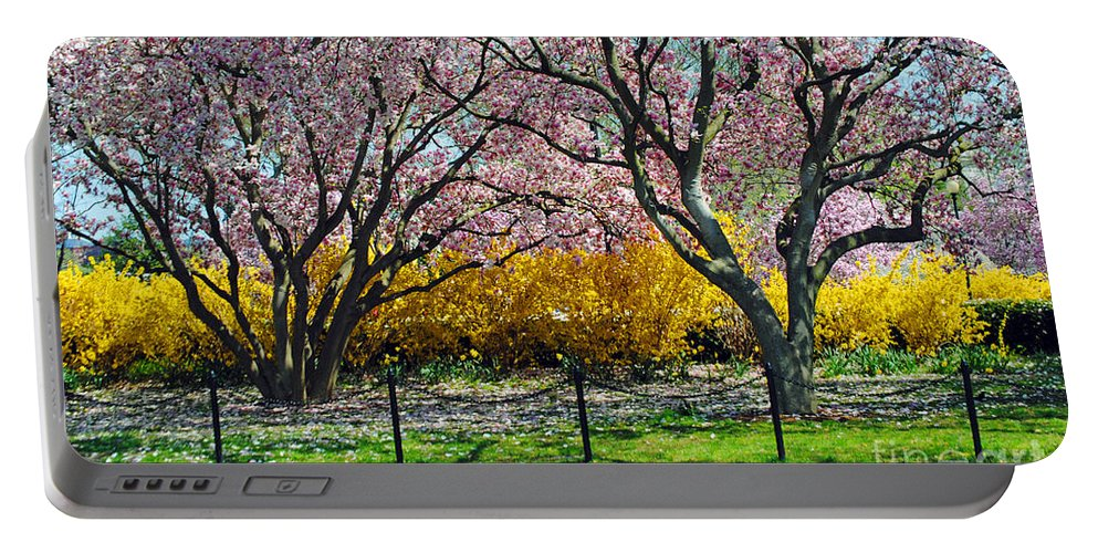 Cherry Portable Battery Charger featuring the photograph Spring Walk by Jost Houk