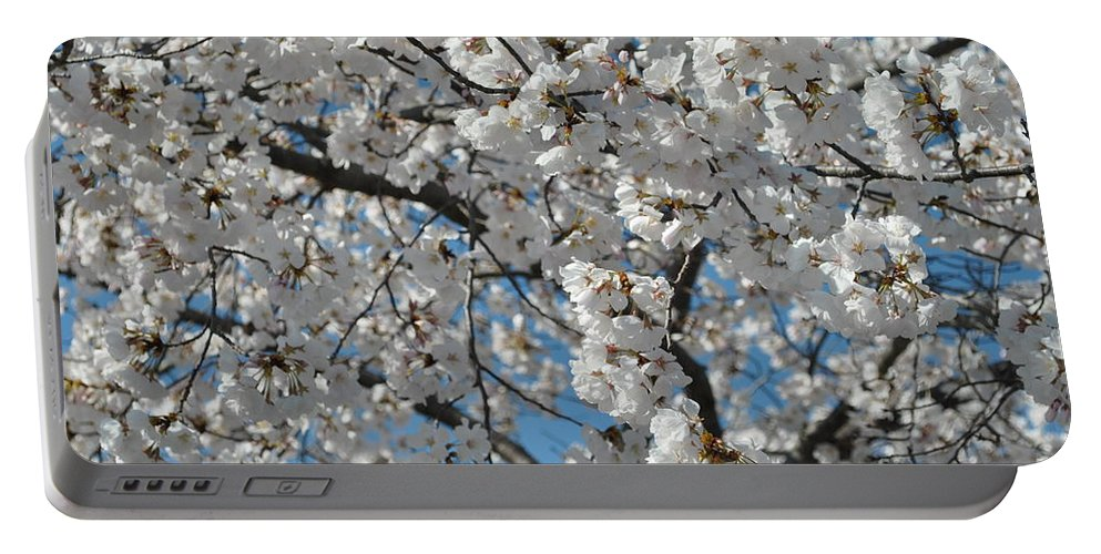 Blossoms Portable Battery Charger featuring the photograph Spring White by Charlotte Stevenson