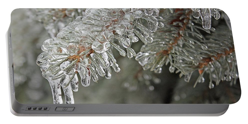 Icycle Portable Battery Charger featuring the photograph Spruce Under Glass by Barbara McMahon