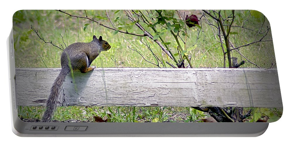 2d Portable Battery Charger featuring the photograph Squirrel And Rosebush by Brian Wallace