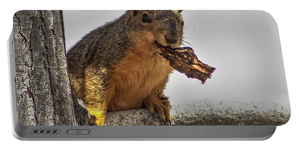 Squirrel Portable Battery Charger featuring the photograph Squirrel Lunch Time by Robert Bales