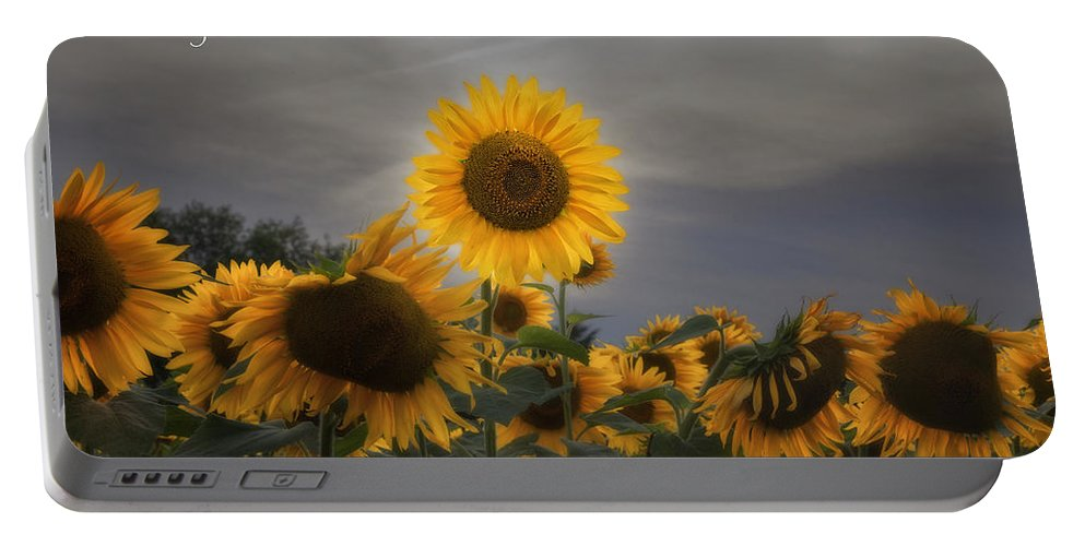 Motivational Portable Battery Charger featuring the photograph Stand Out by Bill Wakeley