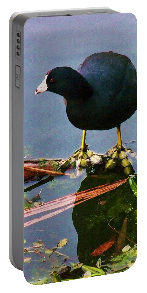 Water Portable Battery Charger featuring the photograph Standing On Water by Chuck Hicks