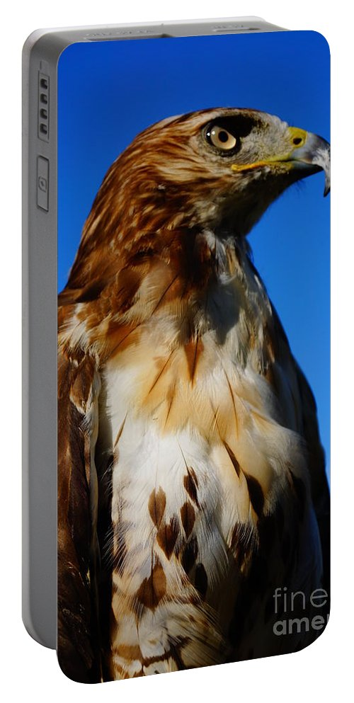 Birds Of Prey Portable Battery Charger featuring the photograph Standing Tall by Jeffery L Bowers