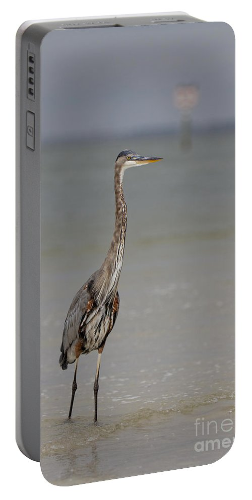 Great Blue Heron Portable Battery Charger featuring the photograph Standing Tall by Rick Kuperberg Sr