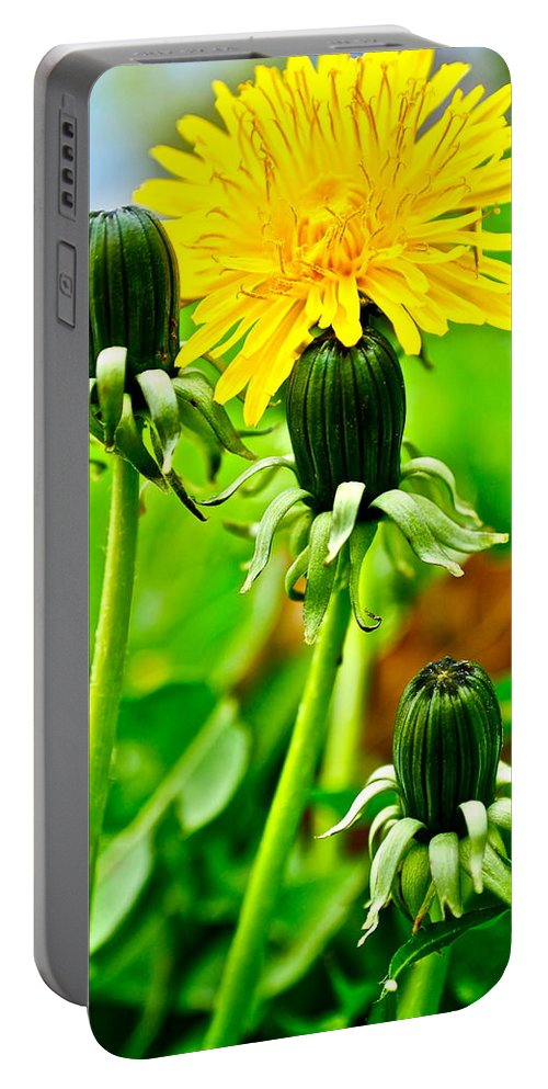 Golden Portable Battery Charger featuring the photograph Standing Tall by Frozen in Time Fine Art Photography
