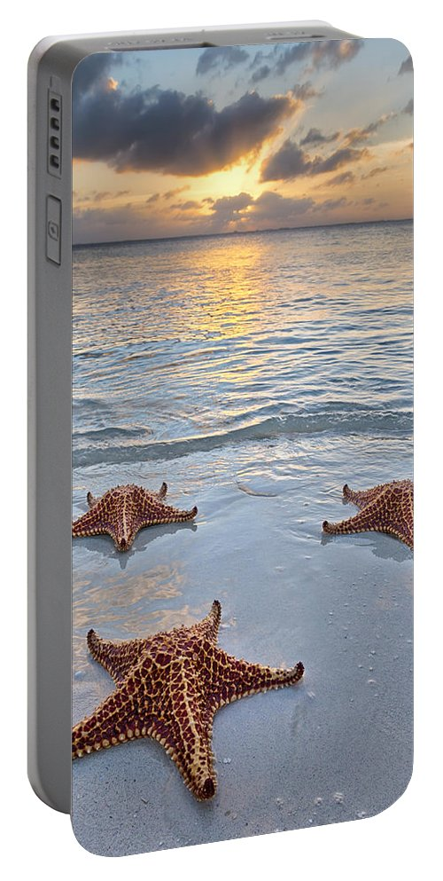 3scape Portable Battery Charger featuring the photograph Starfish Beach Sunset by Adam Romanowicz