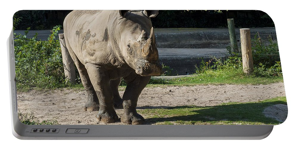 One-horned Rhinoceros Rhino Rhinos Rhinoceroses Horn Horns Animal Animals Creature Creatures Louisiana Purchase Gardens And Zoo Monroe Nature Portable Battery Charger featuring the photograph I Can Hear You by Bob Phillips