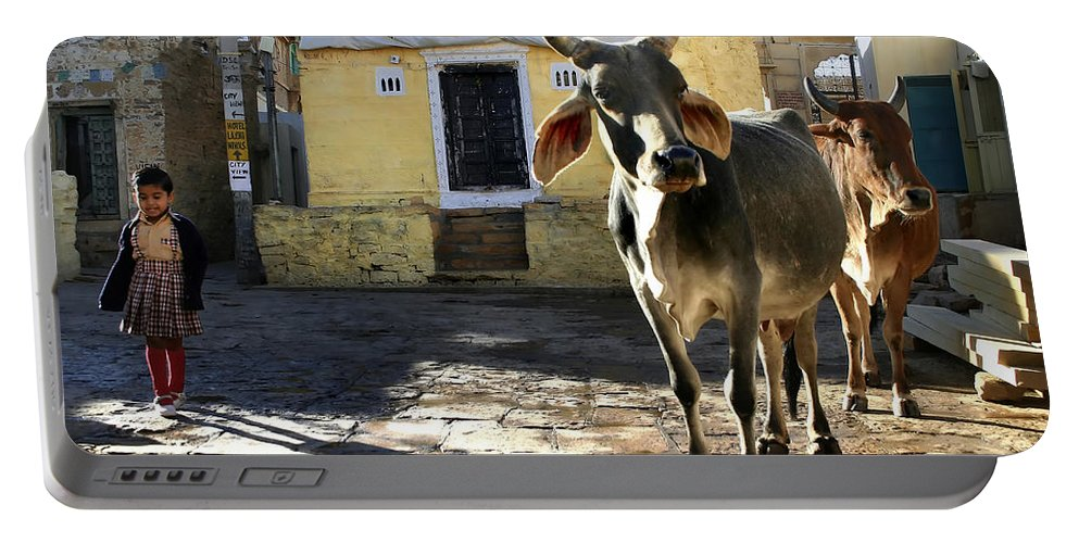 India Portable Battery Charger featuring the photograph Stepping Out.. by A Rey
