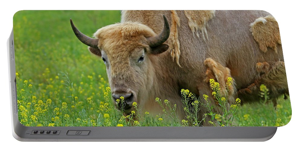 White Buffalo Portable Battery Charger featuring the photograph Stopped To Smell The Flowers by Elizabeth Winter