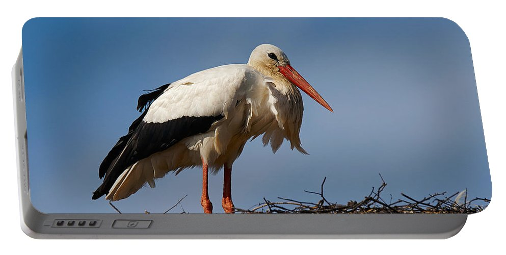 One Portable Battery Charger featuring the photograph Stork On Her Nest by Nick Biemans