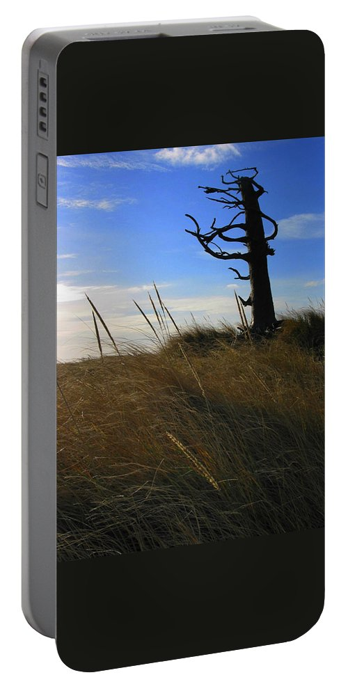 Tree Portable Battery Charger featuring the photograph Stormy Walk On The Beach IIi Long Beach Wa by Jacqueline Russell
