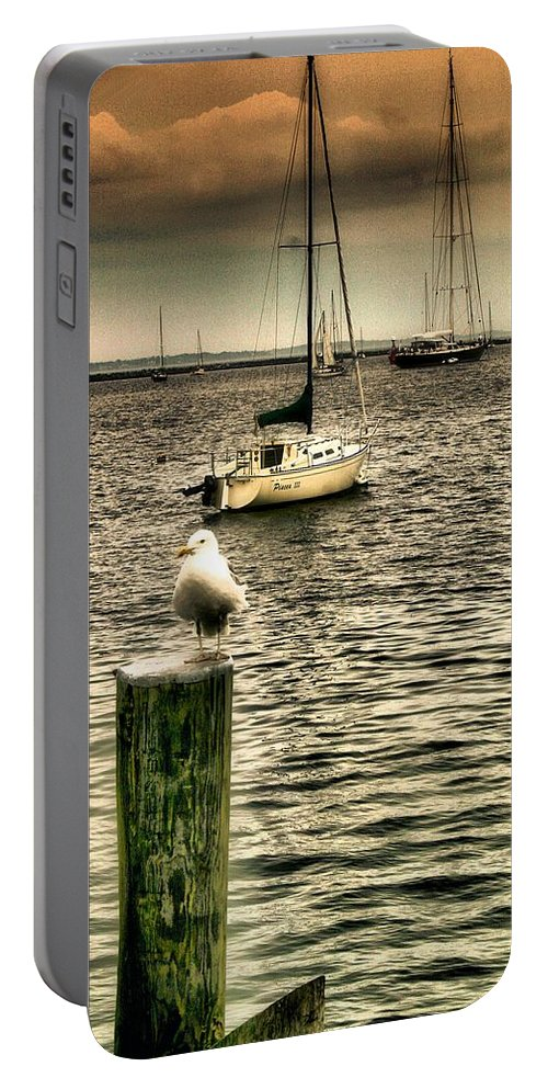 Boats And Ships Portable Battery Charger featuring the photograph Stowaway by Robert McCubbin
