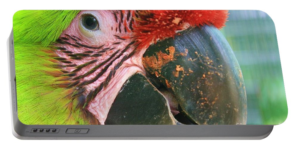 Parrot Portable Battery Charger featuring the photograph Striped Eye by Chuck Hicks