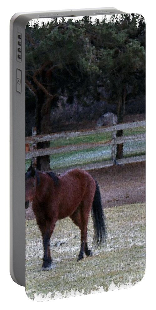 Acrylic Prints Portable Battery Charger featuring the photograph Studdly by Bobbee Rickard