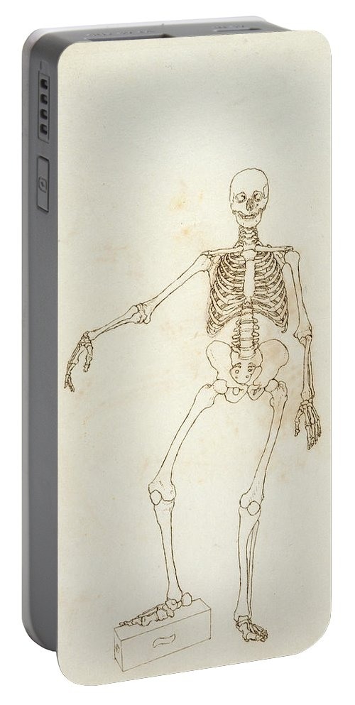 Drawing Portable Battery Charger featuring the photograph Study Of The Human Figure, Anterior View, From A Comparative Anatomical Exposition Of The Structure by George Stubbs