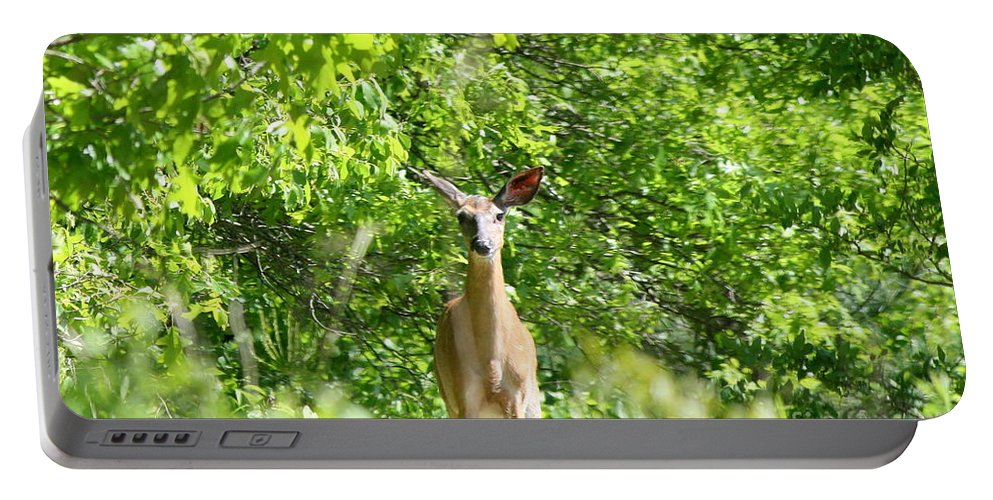 Wildlife Portable Battery Charger featuring the photograph Stumble Upon by Neal Eslinger