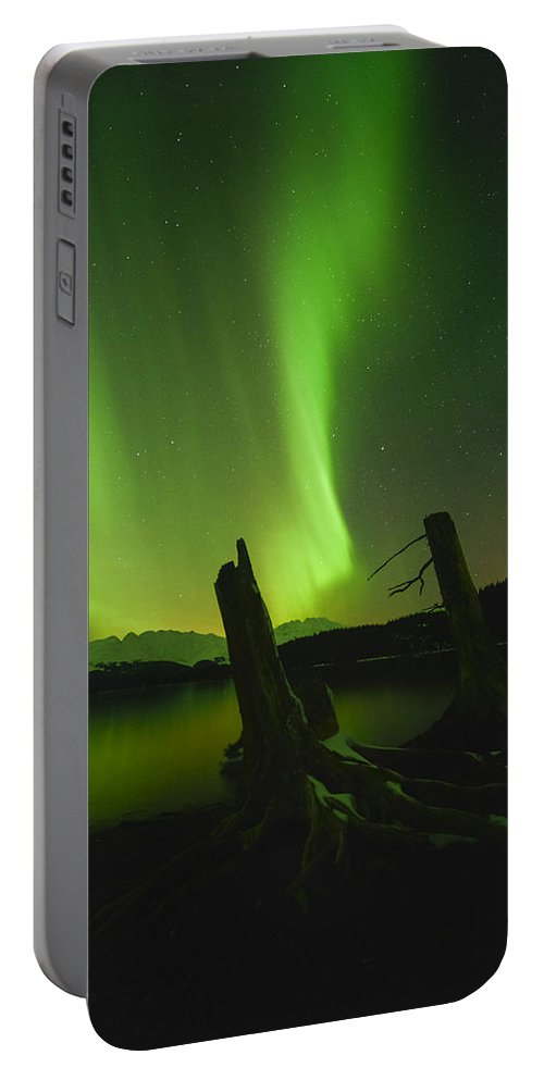 Aurora Portable Battery Charger featuring the photograph Stumped by Ted Raynor