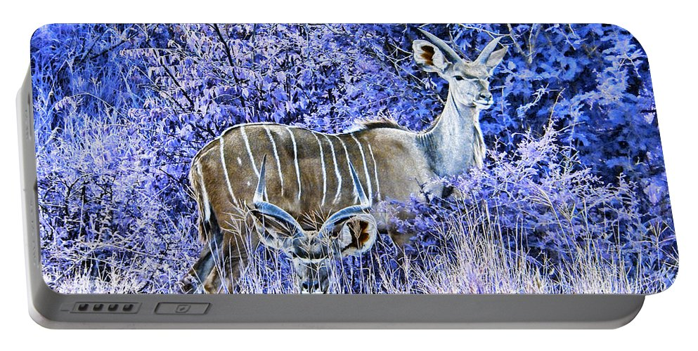 Kudu Bull Portable Battery Charger featuring the photograph Styled Environment- Modern Kudus V3 by Douglas Barnard