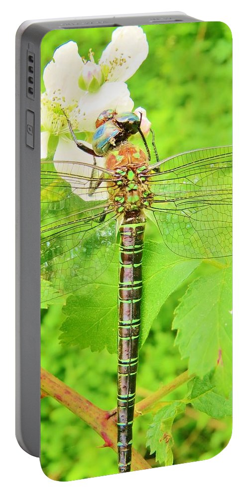 Flower Portable Battery Charger featuring the photograph Sultry by Art Dingo