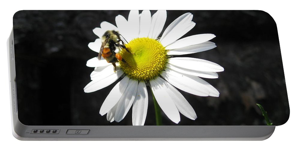 Bumble Bee Portable Battery Charger featuring the photograph Summer Bee by David Mayeau