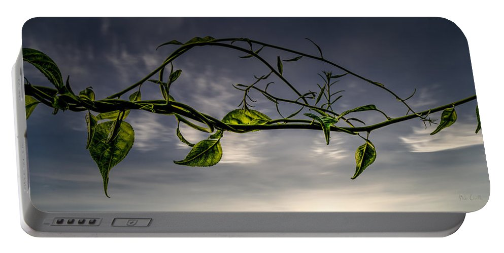 Nature Portable Battery Charger featuring the photograph Summer Green by Bob Orsillo
