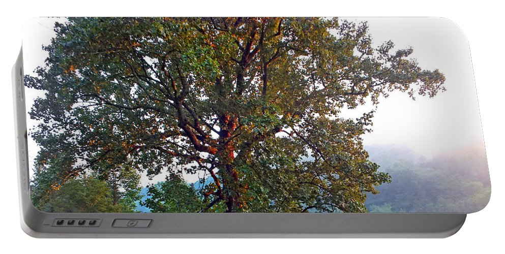Duane Mccullough Portable Battery Charger featuring the photograph Summer Poplar Tree Filtered by Duane McCullough