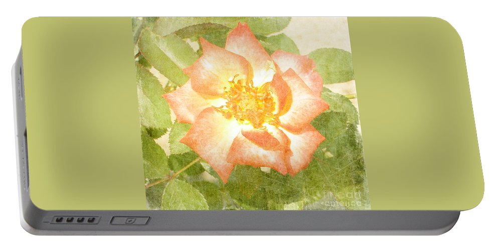 Summer Portable Battery Charger featuring the photograph Summer Rose by Alys Caviness-Gober