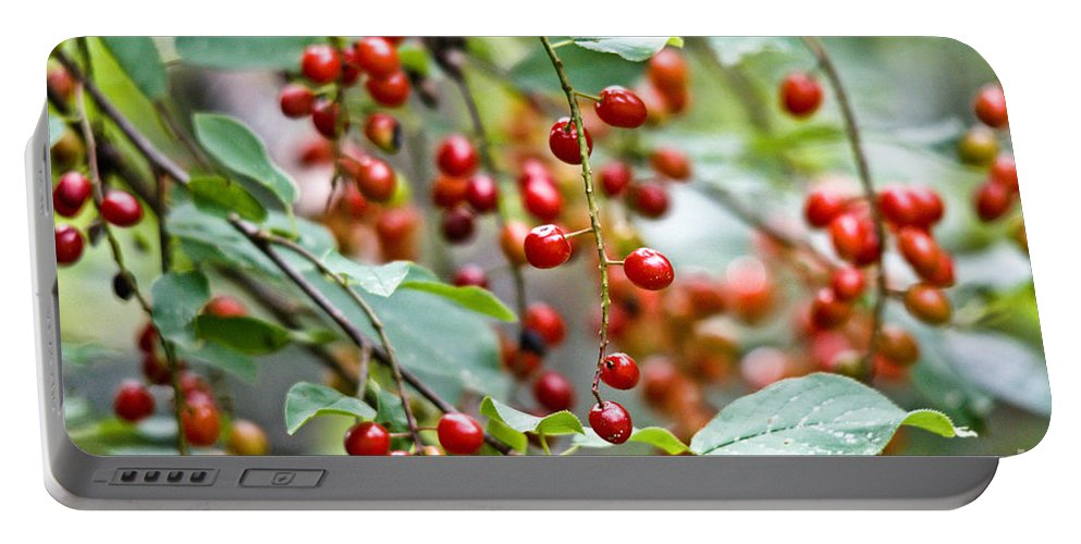 Chokecherries Portable Battery Charger featuring the photograph Summer Wild Berries by Cheryl Baxter