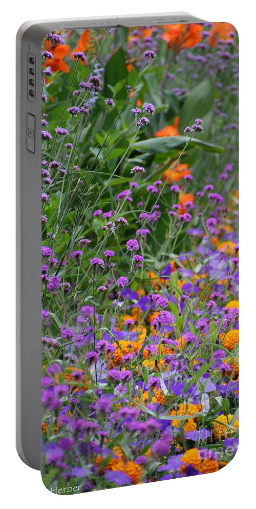 Flower Portable Battery Charger featuring the photograph Summer's Colors by Susan Herber