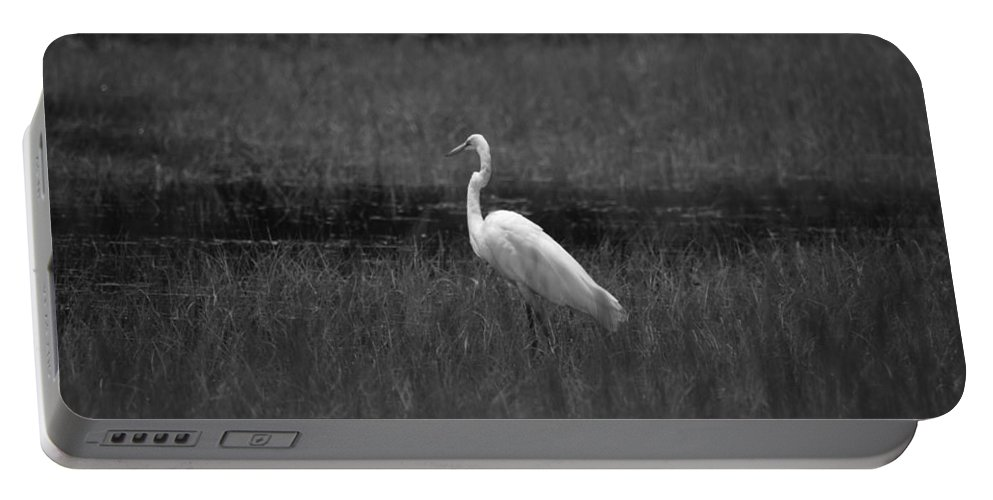 Summer's Night Egret Portable Battery Charger featuring the photograph Summer's Night Egret by Maria Urso