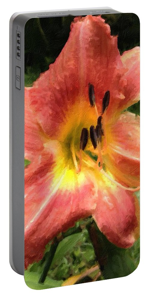 Daylilly Portable Battery Charger featuring the photograph Sun Day Lilly by John Duplantis