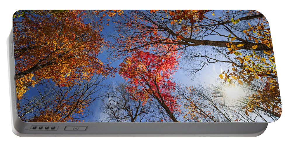Fall Portable Battery Charger featuring the photograph Sun In Fall Forest Canopy by Elena Elisseeva