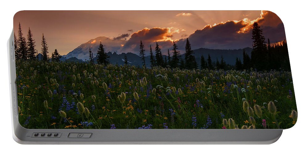 Mt. Rainier Portable Battery Charger featuring the photograph Sunbeam Garden by Mike Dawson