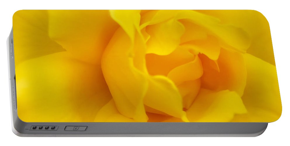 Rose Portable Battery Charger featuring the photograph Sunburst Rose Flower by Jennie Marie Schell