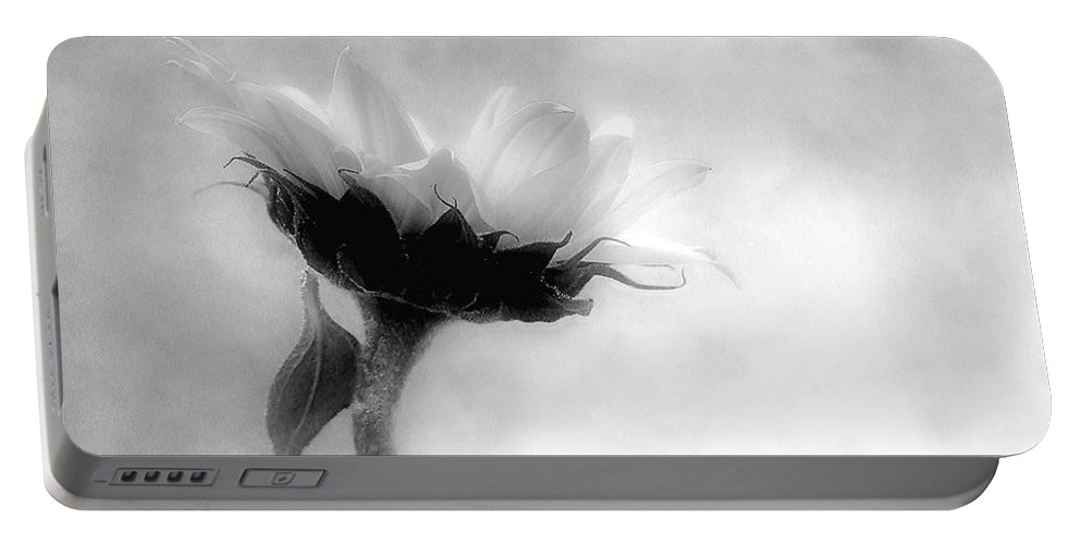 Sunflower Portable Battery Charger featuring the photograph Sunflower In Profile by Louise Kumpf