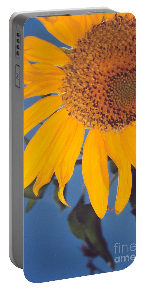 Flower Portable Battery Charger featuring the photograph Sunflower In The Corner by Heather Kirk