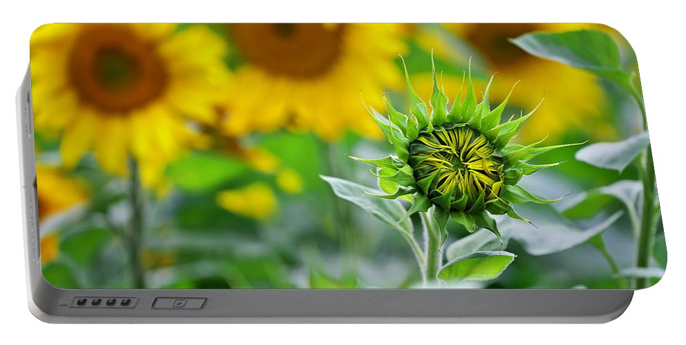 Agriculture Portable Battery Charger featuring the photograph Sunflower by Ivan Slosar