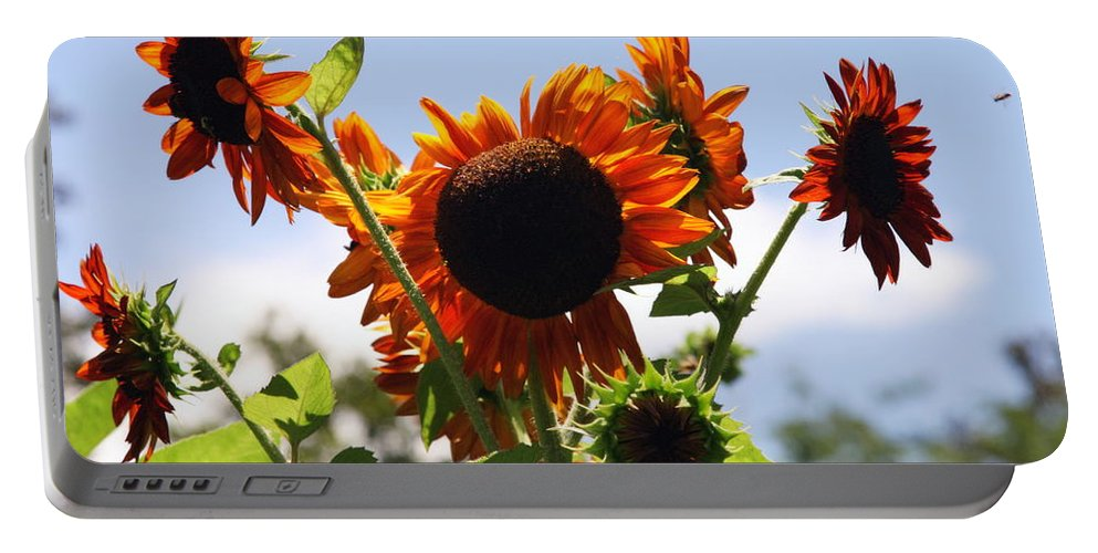 Sunflowers Portable Battery Charger featuring the photograph Sunflower Symphony by Karen Wiles