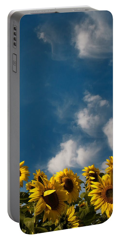 Flower Portable Battery Charger featuring the photograph Sunflowers by TouTouke A Y