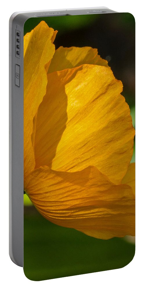 Sun Portable Battery Charger featuring the photograph Sunkissed Poppy by Jordan Blackstone