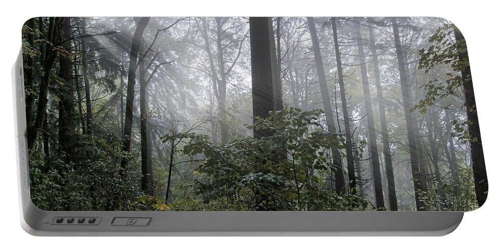 Sunlight And Fog Portable Battery Charger featuring the photograph Sunlight And Fog by Wes and Dotty Weber