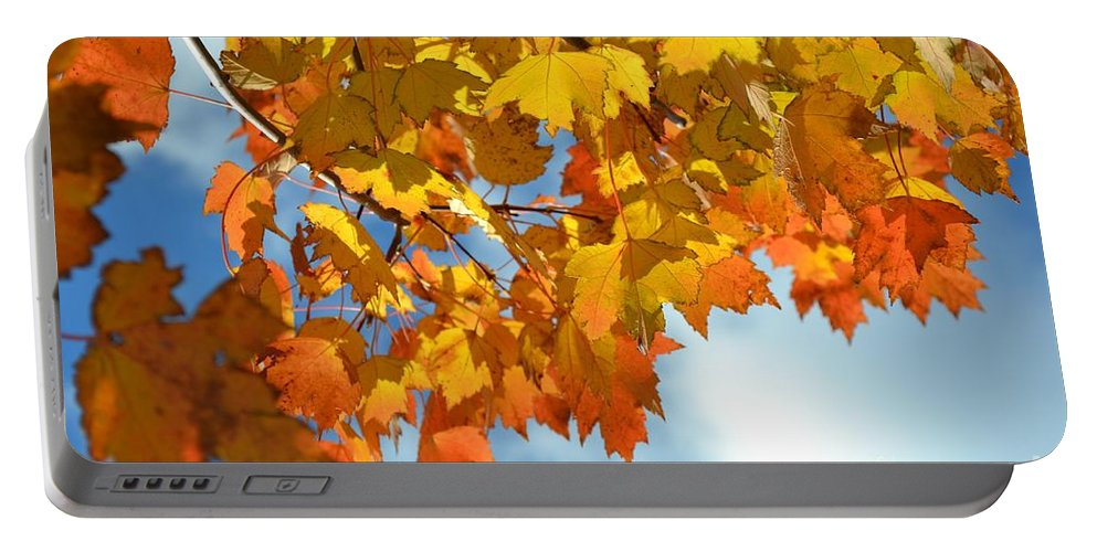 Fall Portable Battery Charger featuring the photograph Sunlight And Shadow - Autumn Leaves Two by Miriam Danar