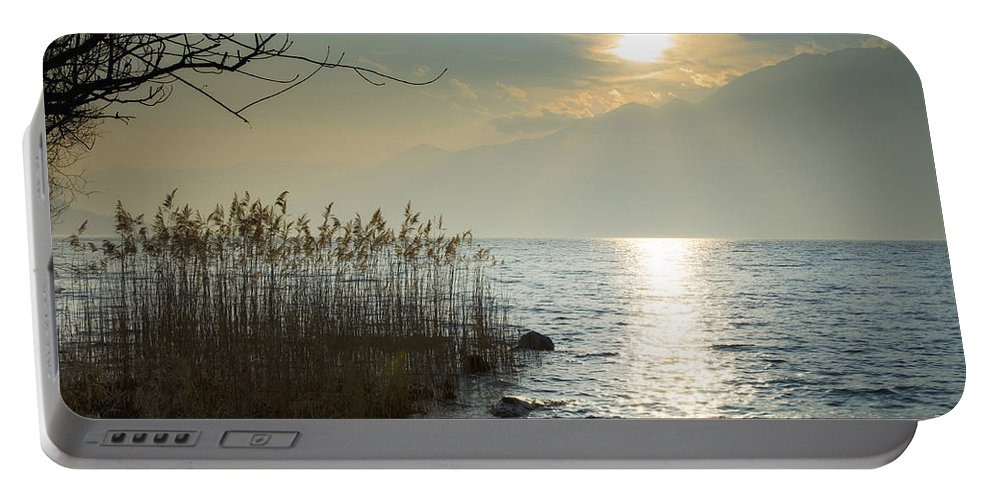 Sunlight Portable Battery Charger featuring the photograph Sunlight On The Lake With Pampas Grass by Mats Silvan