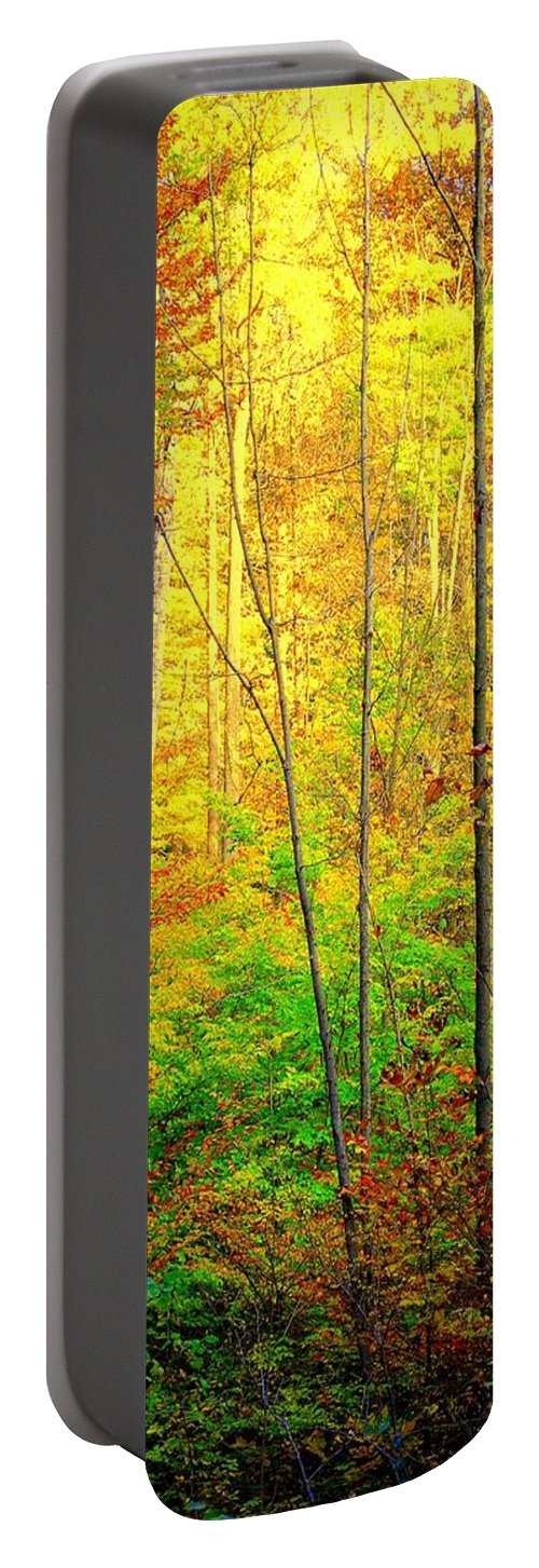 Sunlight Portable Battery Charger featuring the photograph Sunlights Warmth by Frozen in Time Fine Art Photography