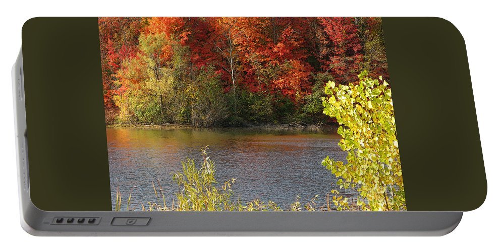 Autumn Portable Battery Charger featuring the photograph Sunlit Autumn by Ann Horn