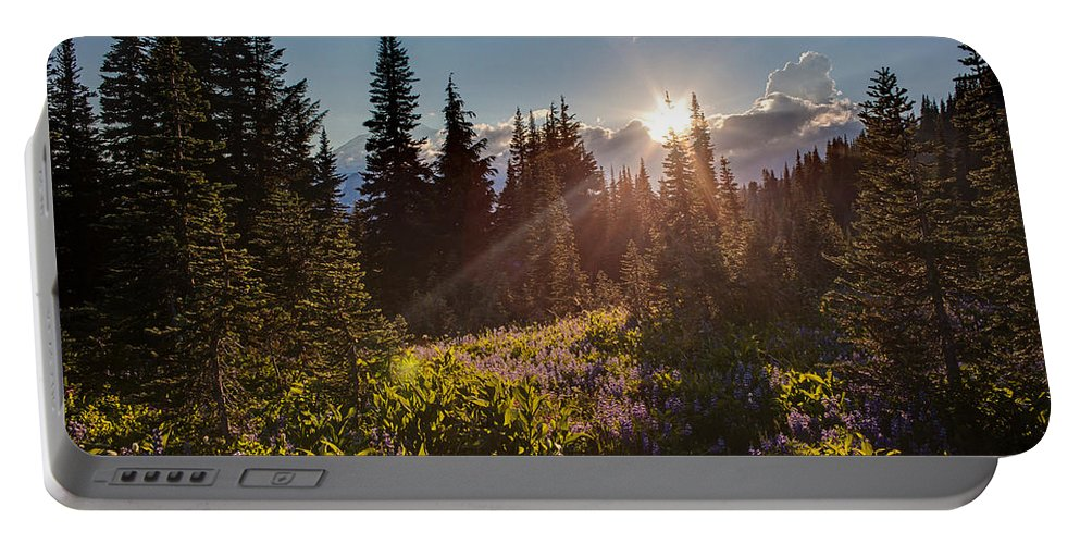 Rainier Portable Battery Charger featuring the photograph Sunlit Flower Meadows by Mike Reid