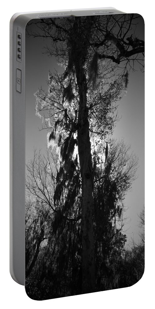 Black Portable Battery Charger featuring the photograph Sunlit Moss by Phil Penne