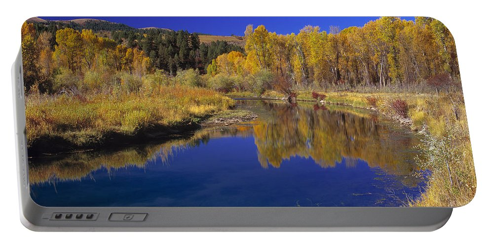 Sunny Day Portable Battery Charger featuring the photograph Sunny Day by Leland D Howard